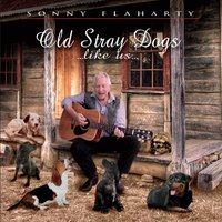 Sonny Flaharty | Old Stray Dogs Like Us