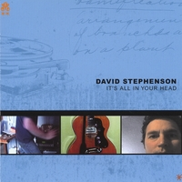 David Stephenson | It's All In Your Head