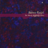 Steve Gold | So Much Magnificence