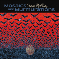 Steve Mullins | Mosaics and Murmurations