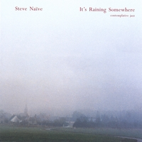 Steve Nieve | It's Raining Somewhere