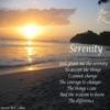 Steven M.F. Cohen: Serenity