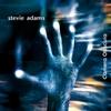Stevie Adams: Camera Obscura