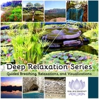 Stop and Breathe | Deep Relaxation Series: Guided Breathing, Relaxations, & Visualizations