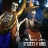 Streets of Rome: My Fiesta Days
