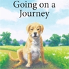 Susan Harrison: Going On a Journey
