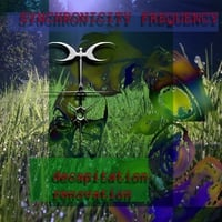 Synchronicity Frequency | Decapitation Renovation