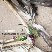Tailor Birds | Wide Awake I See the Storm
