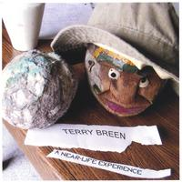 Terry Breen | A Near-Life Experience