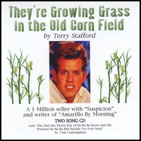 Terry Stafford | They're Growing Grass In The Old Corn Field