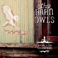 The Barn Owls | Horses in the Canebreak