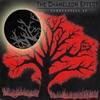 The Chameleon Effect: Sandcastles EP