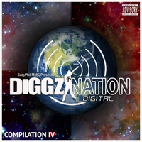 Various Artists | The Diggz Nation Compilation, Vol. 4