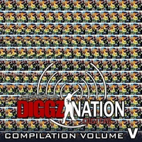 Various Artists | The Diggz Nation Compilation, Vol. 5