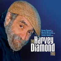 The Harvey Diamond Trio | The Harvey Diamond Trio