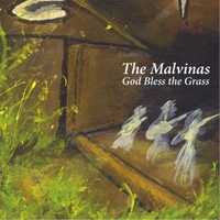 The Malvinas | God Bless the Grass