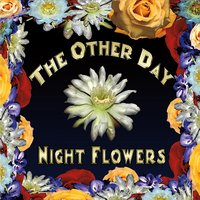 The Other Day | Night Flowers