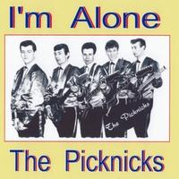 Afbeeldingsresultaat voor The Pick Nicks