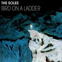 The Soles | Bird On a Ladder