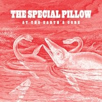 The Special Pillow | At the Earth's Core