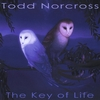 Todd Norcross: The Key of Life