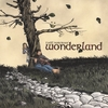 Todd Norcross: Wonderland