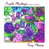Tony Mecca: Purple Monkeys