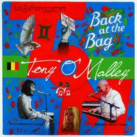 Tony O'Malley | Back at the Bag
