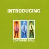 TORTURED SOUL: Introducing Tortured Soul