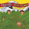 Toucans Steel Drum Band: Beak Sounds