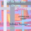 Jolinko Tsongo: Like The Mist That Lingers - Sketches 1 (African Mist)