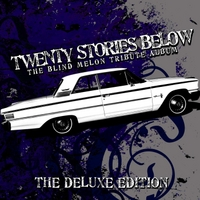 Various Artists: Twenty Stories Below (The Blind Melon Tribute Album)