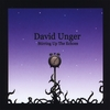 DAVID UNGER: Stirring Up The Echoes