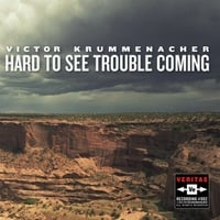 Victor Krummenacher | Hard to See Trouble Coming