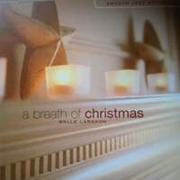 Walle Larsson | A Breath of Christmas