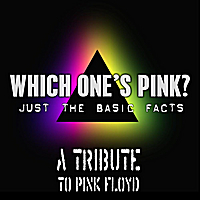 Which One's Pink? | Pink Floyd Tribute: Just the basic facts