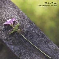 White Town | Don't Mention The War