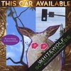 WhiteWolfSonicPrincess: This Car Available - Reloaded/Remastered