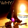 Why: The Leap
