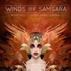 Wouter Kellerman and Ricky Kej: Winds of Samsara