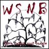 WSNB: Jomo Swamp Root Boogie