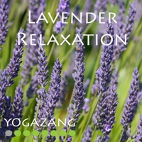 Yogazang | Lavender Relaxation
