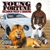Young Fortune: Recession Proof 2 Diamond