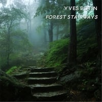 Yves Potin | Forest Stairways