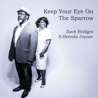 Zach Bridges | Keep Your Eye on the Sparrow