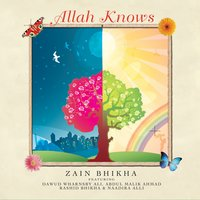 Zain Bhikha | Allah Knows