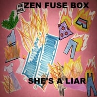 Zen Fuse Box | She's a Liar